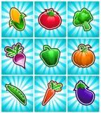 Kleurrijke Glanzende Plantaardige Pictogrammen Royalty-vrije Stock Foto's