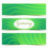 Kleurrijke groene geplaatste golvenbanners Het vectorontwerp van het illustratiemalplaatje royalty-vrije illustratie