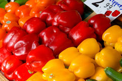 Kleurrijke groene paprika's Stock Foto