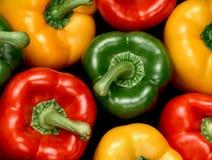Kleurrijke groene paprika's op zwarte achtergrond Royalty-vrije Stock Fotografie