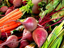 Kleurrijke groenten Royalty-vrije Stock Afbeeldingen