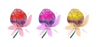 Kleurrijke hand geschilderde waterverfbloemen stock illustratie