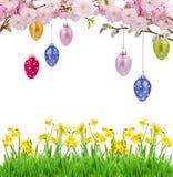 Kleurrijke hangende paaseieren Royalty-vrije Stock Fotografie