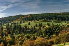 Kleurrijke herfstbossen in de Elzas, Frankrijk Royalty-vrije Stock Foto