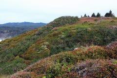 Kleurrijke heuvel Stock Afbeeldingen