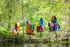 Kleurrijke huizen voor vogels Stock Foto's