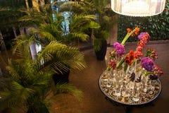 Kleurrijke huwelijksbloemen op de lijst Varens in potten stock afbeelding