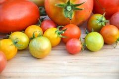 Kleurrijke inlandse tomaten royalty-vrije stock afbeeldingen