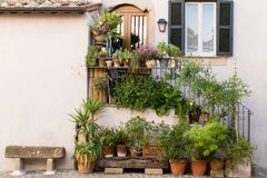 Kleurrijke installaties en bloemen buiten een huis royalty-vrije stock afbeelding