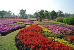 Kleurrijke installaties in Suan Luang Rama 9, Bangkok Thailand Royalty-vrije Stock Foto