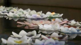 Kleurrijke Kaarsen in Lotus Shape Floating op Water in een Boeddhistische Tempel Pattaya thailand stock video