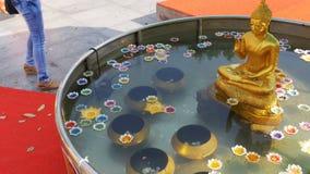 Kleurrijke Kaarsen in Lotus Shape Floating op Water in een Boeddhistische Tempel Pattaya thailand stock footage