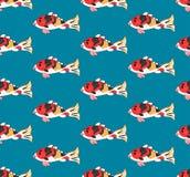 Kleurrijke karper op indigo blauwe achtergrond Vector illustratie Royalty-vrije Stock Afbeeldingen