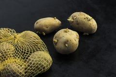 Kleurrijke, keurige, heldere die aardappels, prachtig op een donkere achtergrond worden opgemaakt Royalty-vrije Stock Afbeeldingen