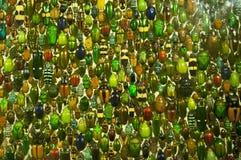 Kleurrijke kevers Stock Foto