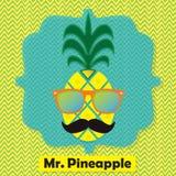 Kleurrijke koele M. Het embleempictogram van het ananasfruit op chevronpatroon Royalty-vrije Stock Fotografie