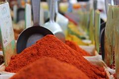 Kleurrijke Kruiden Stock Foto