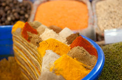 Kleurrijke Kruiden Stock Foto's