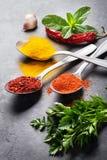 Kleurrijke kruiden en kruiden royalty-vrije stock afbeelding
