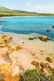Kleurrijke kust in Alghero stock fotografie
