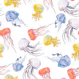 Kleurrijke kwallen Overzees patroon Naadloze patroonwaterverf Vector Stock Afbeelding