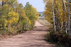 Kleurrijke landweg Royalty-vrije Stock Foto
