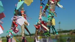 Kleurrijke linten die op de boom van wens slingeren stock footage