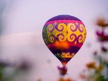 Kleurrijke luchtballonnen die over kosmosbloemen bij zonsondergang vliegen royalty-vrije stock foto's