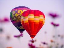 Kleurrijke luchtballonnen die over kosmosbloemen bij zonsondergang vliegen stock foto's