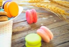 Kleurrijke macarons op uitstekende pastelkleurachtergrond Macaron of Macar Stock Fotografie