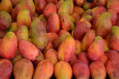 Kleurrijke mango'sachtergrond Royalty-vrije Stock Afbeeldingen