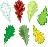 Kleurrijke mozaïek eiken bladeren gemakkelijk zich te wijzigen Stock Afbeelding