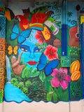 Kleurrijke Muurschilderingen, Puerto Viejo royalty-vrije stock afbeelding