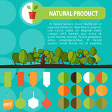 Kleurrijke Natuurlijk Geplaatste Product Bio Groene Etiketten Stock Afbeelding