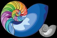 Kleurrijke nautilusshell Royalty-vrije Stock Foto's