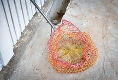 Kleurrijke netto voor Vangstdieren stock foto's