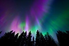 Kleurrijke noordelijke lichten Stock Fotografie