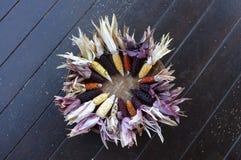 Kleurrijke oren van droog graan in Thailand royalty-vrije stock afbeeldingen
