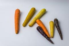 Kleurrijke organische wortelen op witte achtergrond royalty-vrije stock afbeelding