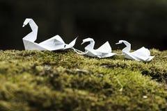 Kleurrijke Origamizwaan Stock Afbeeldingen