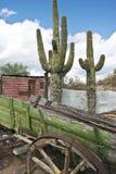 Kleurrijke Oude west verlaten wagen Stock Fotografie