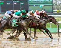 Kleurrijke Paardenrennenfoto's van Belmont stock afbeelding