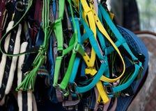 Kleurrijke paardteugels Stock Foto's