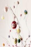 Kleurrijke paaseieren die op takken hangen Royalty-vrije Stock Afbeeldingen