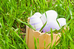 Kleurrijke paaseieren in een mand in het gras Royalty-vrije Stock Afbeeldingen