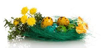 Kleurrijke paaseieren in nest, bloemen en vlinder op wit Stock Foto