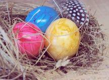 Kleurrijke paaseieren in nest met veer stock afbeelding