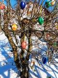 Kleurrijke paaseieren op de lenteboom Stock Afbeeldingen