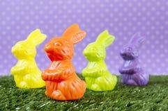 Kleurrijke Paashazen Stock Foto