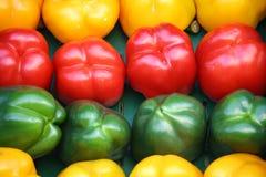 Kleurrijke paprika Stock Fotografie